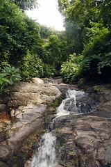Njokamoni Falls Udzungwa Mountains National Park in Tanzania