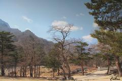 -Seoraksan National Park, Jeju, South Korea