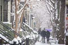 Snow in the city - Swann Street NW