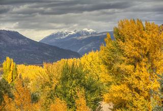 snow and fall Animas Valley