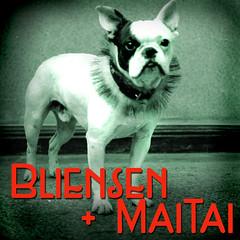 Logo Bliensen 14 512x512
