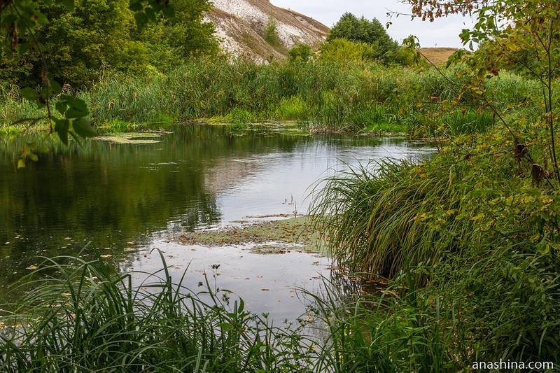 Река Толучеевка, Воронежская область