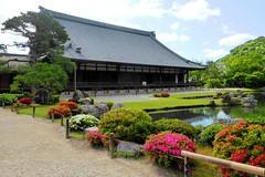 Tenryu-ji, Sogenchi Teien (Garden) -10 (June 2017)