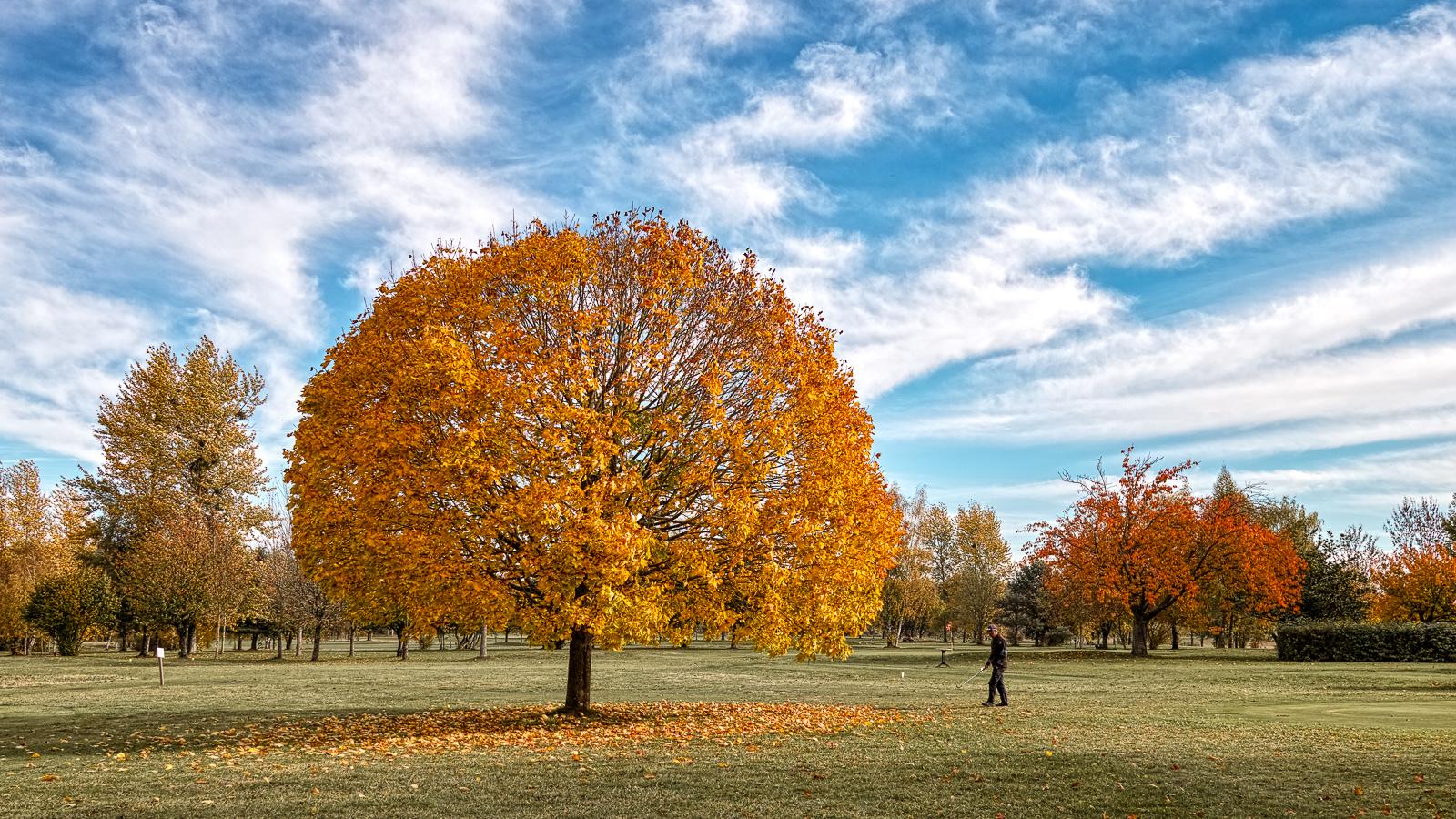 """thème du jeu de Novembre """"Couleurs d'automne"""" 44853290485_0cf84e1363_o"""