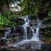 leura waterfalls by Alistair-harris