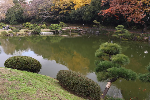 Japanese Garden in Auutumn Color