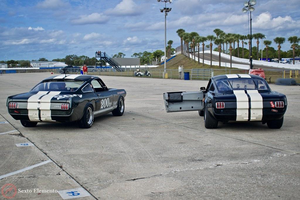 ford-mustangs-road-race