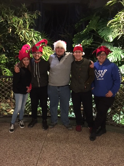 Family Outing to ZooLights 2018 at Lincoln Park Zoo