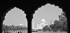 India 79