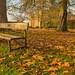 Autumn At Himley Hall
