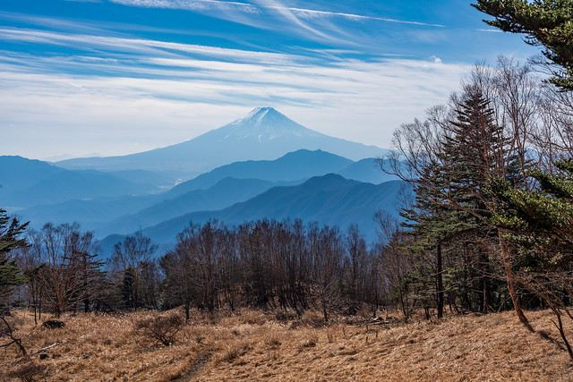 富士山@雁ヶ腹摺山