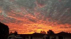Follow up to an amazing sunrise,  is an awesomazing sunset. This is the best time to live in Santa Cruz