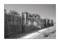 00164 Les remparts de Provins