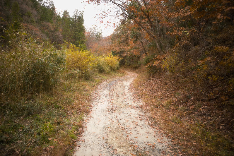 path #2