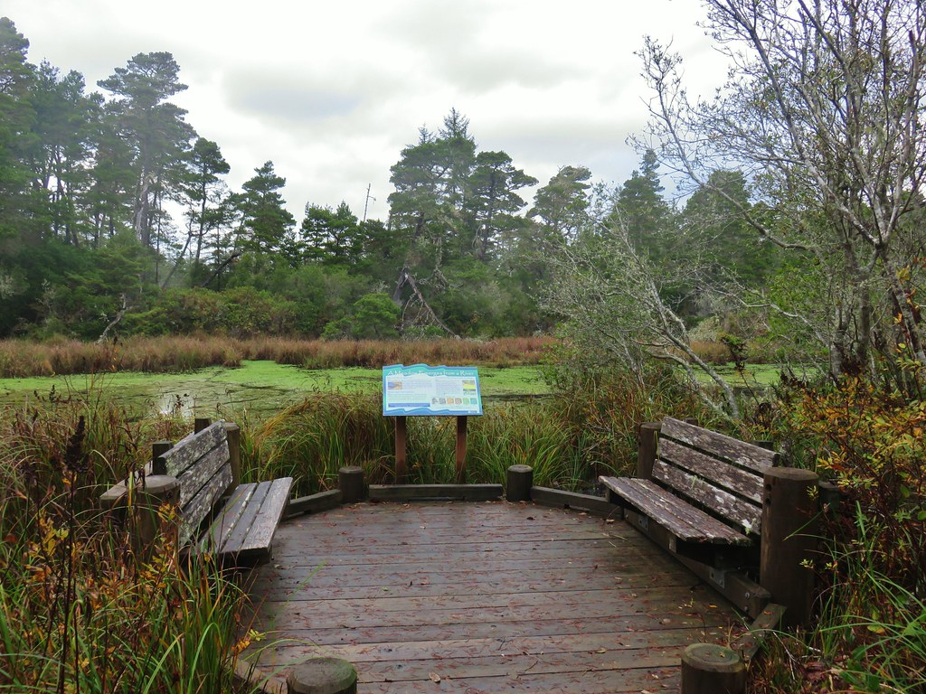 Interpretive sign along the Siltcoos Lagoon
