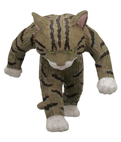 【官圖&販售資訊更新】《奇譚俱樂部》「硬派貓咪」強勢登場?!たくましい猫