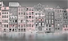 Liquid Gardens ? amsterdam