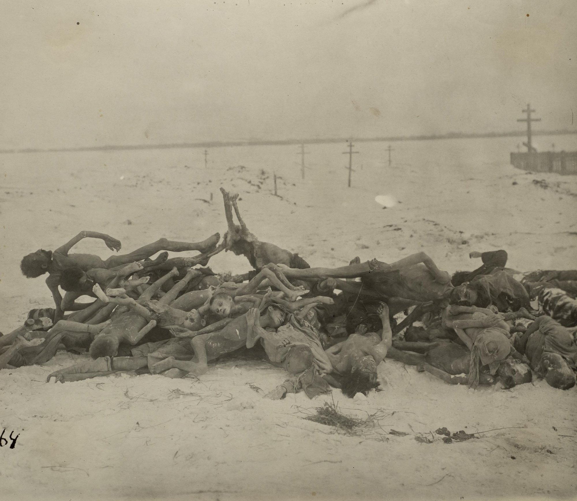 Кладбище (сваленные в кучу окоченевшие трупы детей). Бузулукский уезд