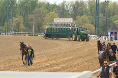 2016-04-22 (28) starting gate on the move for race 7 at Laurel Park