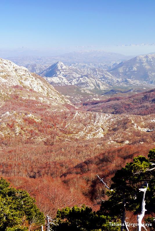 Вид на окрестности с вершины Борова глава