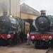 RD19044.  7029 & 4965 at Tyseley.