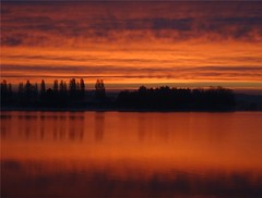 Krasses Morgenrot am Lac Du Der - Photo of Droyes