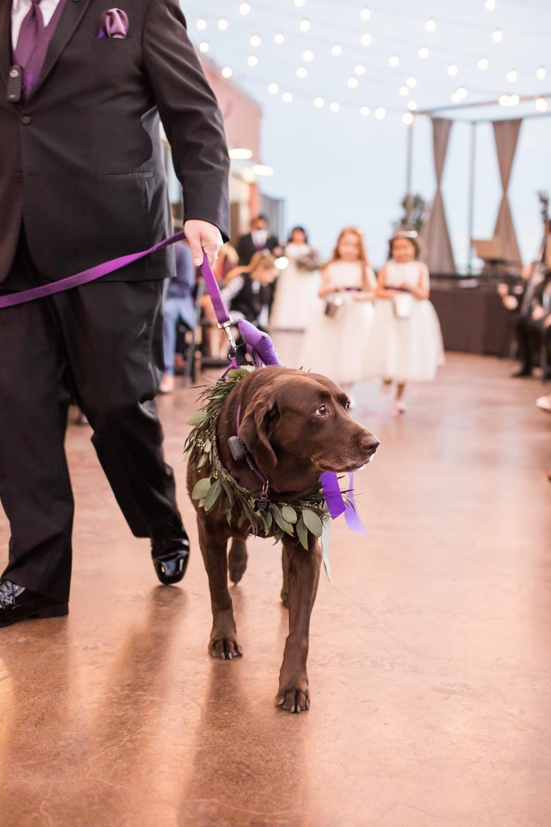 gilleys_dallas_wedding-51-2