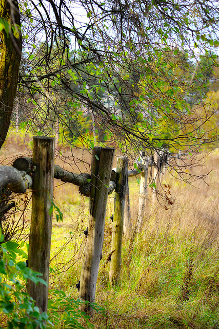 Long fence along, Canon EOS 600D, Sigma 50-200mm f/4-5.6 DC OS HSM