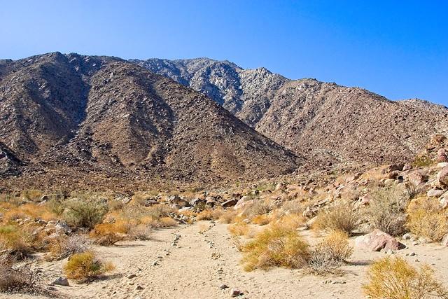 Palm Canyon walk, Sony ILCE-6000, Sony E 18-200mm F3.5-6.3 OSS