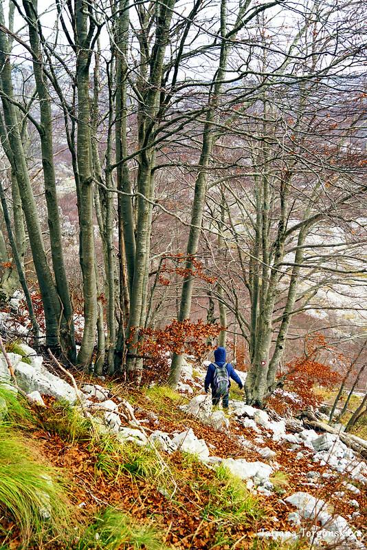 Спуск с Каменски Кабао к перевалу Вртало