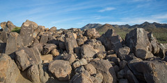 Ancient Desert Petroglyphs
