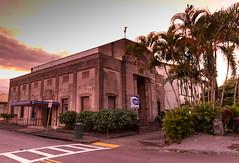 Hilo Pacific Tsnumai Museum Big island Hawaii Park