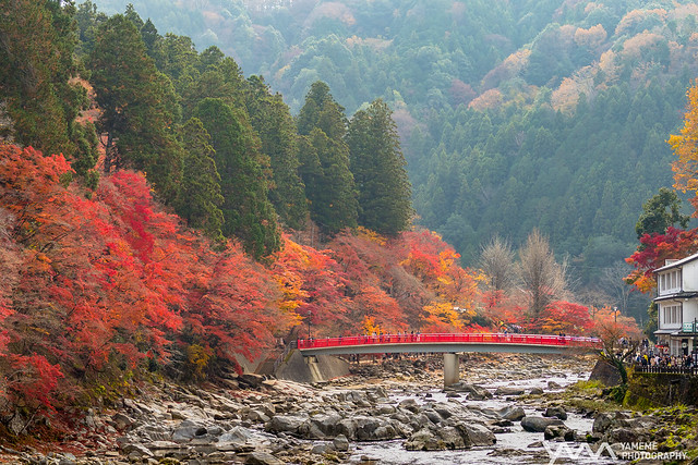 香嵐溪 Kourankei / Toyota City, Japan, Olympus E-M5MarkII, Leica DG Nocticron 42.5mm F1.2 Asph. Power OIS