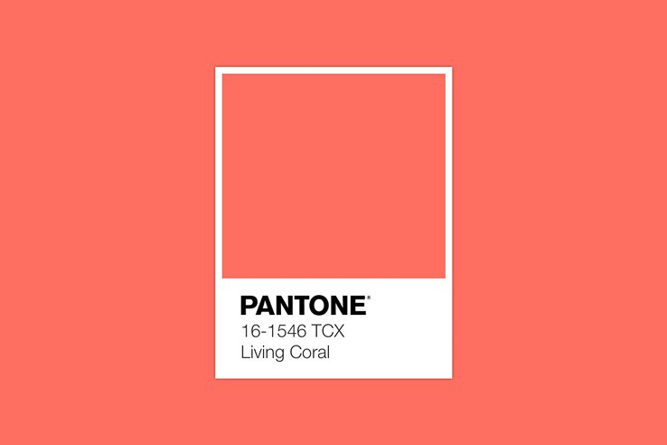 pantone-color-of-the-year-2019