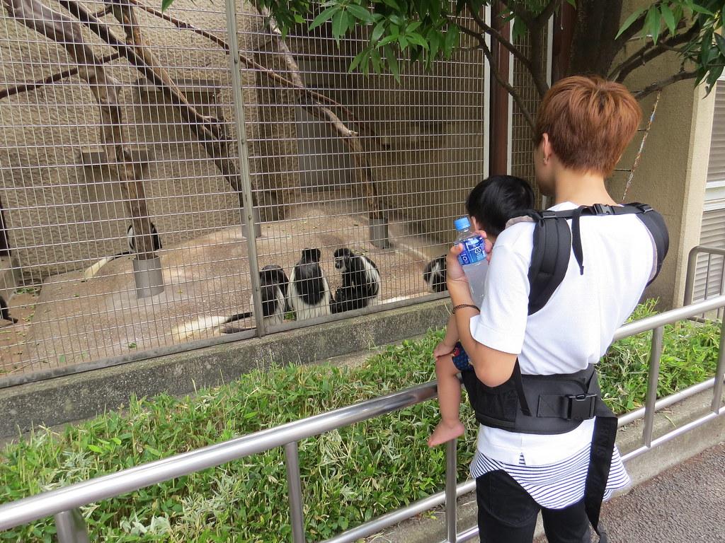 TOKYO ZOO上野動物園(兩光媽咪柳幼幼) (13)