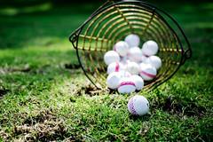 Golf basket with golf balls
