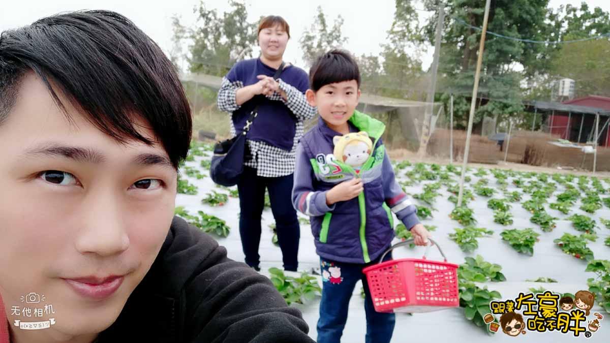 大岡山觀光草莓園-3