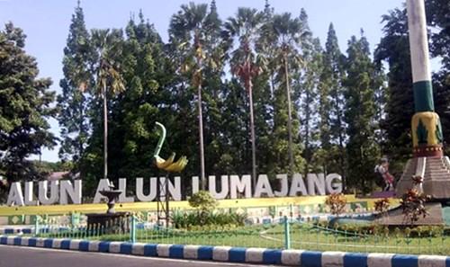 QnC Jelly Gamat di Lumajang