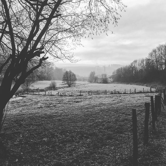 Winter ohne Schnee, Apple iPhone 7, iPhone 7 back camera 3.99mm f/1.8