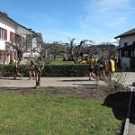 1. Vereinslauf  2019: Runningday Eschenbach