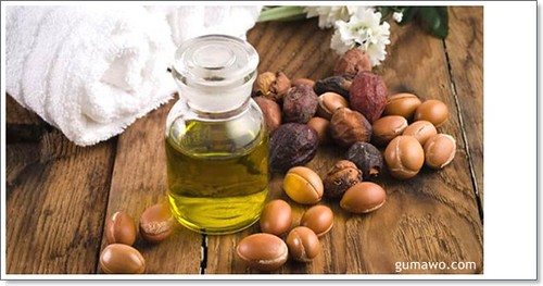 Mengupas Khasiat Minyak Argan Bagi Kecantikan