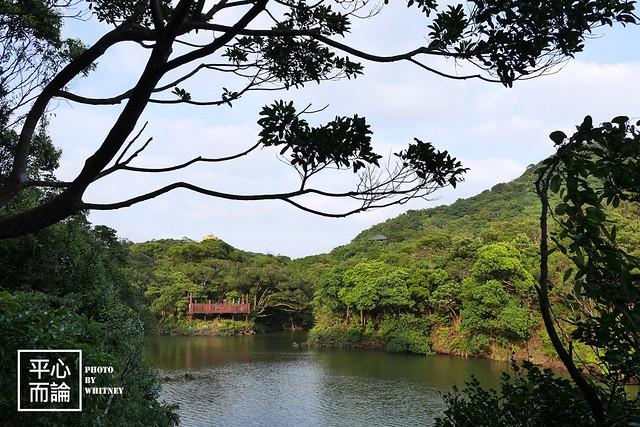 情人湖公園 (15)