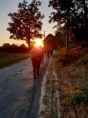 Première photo de la série Sunset. On commence avec un groupe de militaires en exercice en fin de journée. - Photo of Exireuil