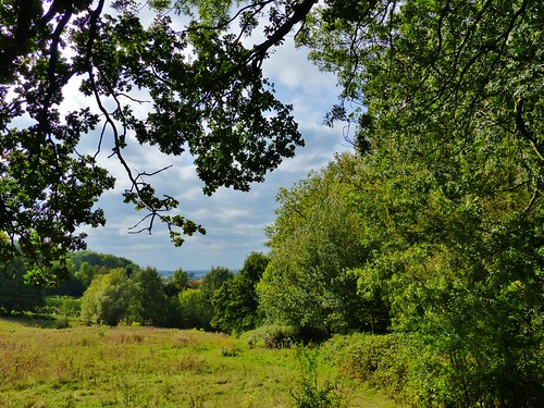 Ename 08 - Van dorp tot bos