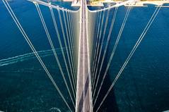 Bridges 橋