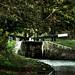 New Marton Locks