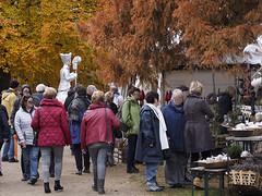 Autumn market at Hülshoff castle park