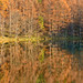 Autumn reflections, Nagano Prefecture by Vincent_Ting