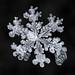 Snowflake-a-Day No. 5 by Don Komarechka