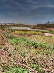 Thurrock Tameside Essex